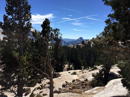 YosemiteOlmsteadPoint-3