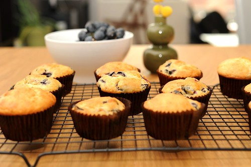 concord grape rosemary muffins | by sassyradish