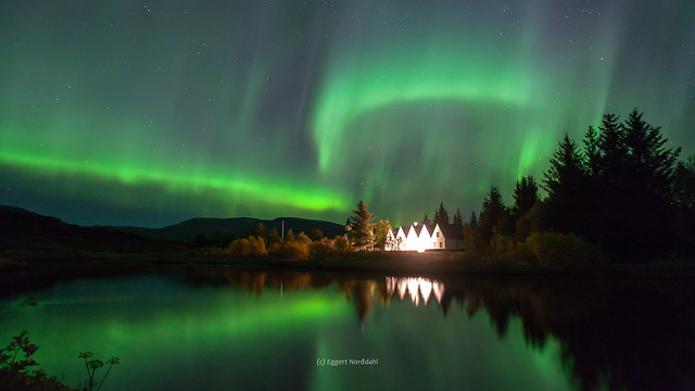 Thingvellir Aurora Lights D169351