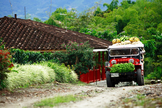 Jeep carrying bananas in the Coffee Zone, Colombia