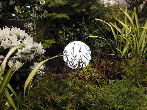 Moon Sphere Portrait | by RHR Horticulture