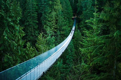 Capilano Suspension Bridge | by michellerlee