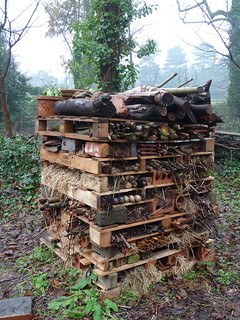 Bug Hotel | by London Permaculture