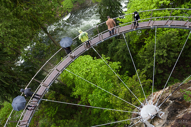 Capilano Suspension Bridge CLIFFWALK Preview