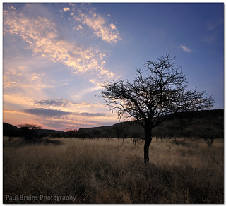Waterberg Plateau Sunset | by Panorama Paul