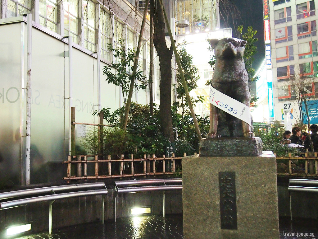 Shibuya Dog - travel.joogo.sg