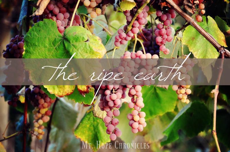 The Ripe Earth @ Mt. Hope Chronicles