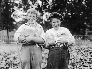 Couple of Portland 4-H Rabbit club boys | by OSU Special Collections & Archives : Commons