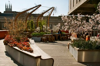 Spring in the Roof Garden | by Lyric Hammersmith, London