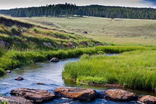 west river black singles Laramie river dude ranch operated as the ut bar dude ranch for over  laramie river dude ranch is featured in great ranches of today's wild west by.