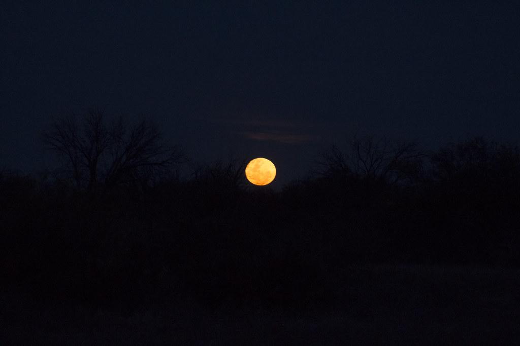 En busca de la super luna 31128301966_8f232479c1_b