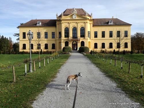 Braunsberg & Eckartsau