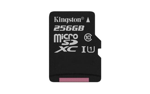 microSDXC Class 10 UHS-I 256GB