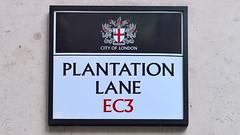 Plantation Lane