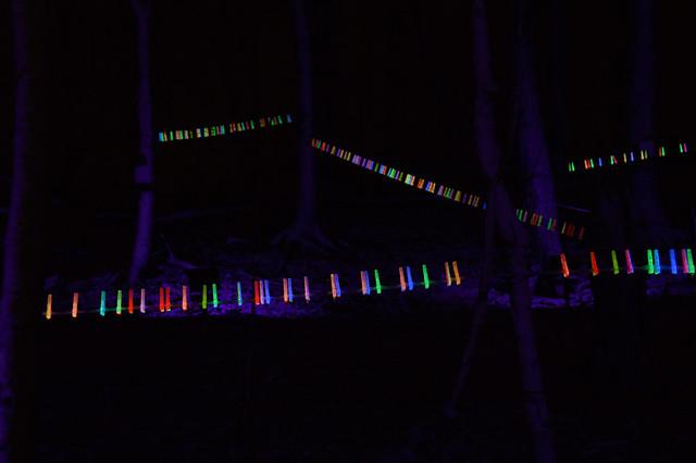bruce light at arboretum-30web