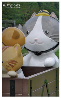 侯硐貓村-33