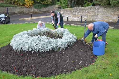 Church Green Maintenance Day Oct 16 (7)