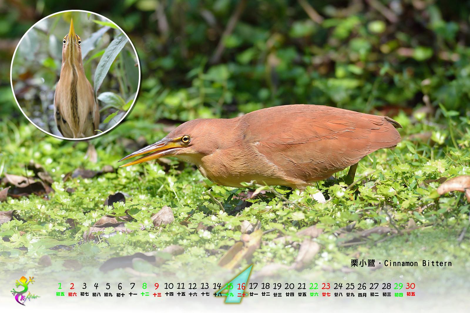 Calendar2017_2_05