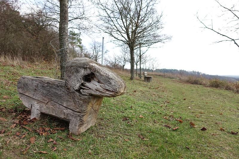 Am Hörnchen (über Dromersheim)