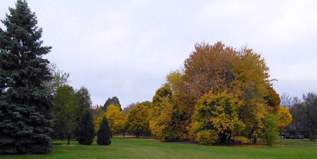 Parc Maisonneuve