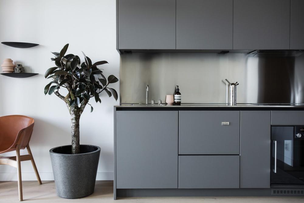 Modern Luxurious Apartment