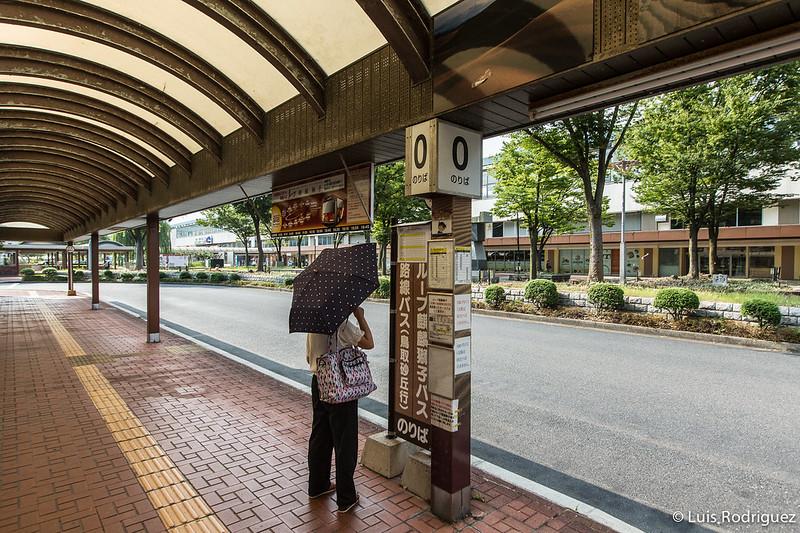 Dunas-arena-Tottori-1