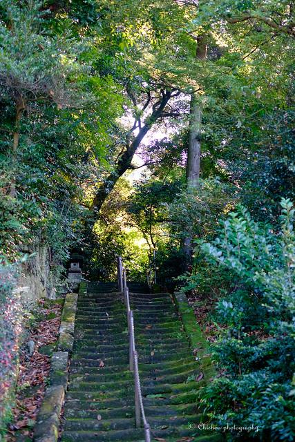 鎌倉散策~Kamakura stroll(2016.October)