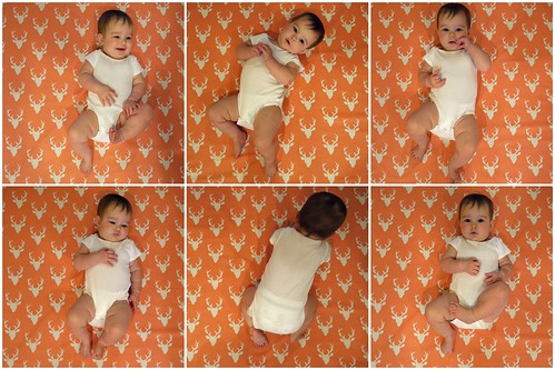 Eight Months Collage