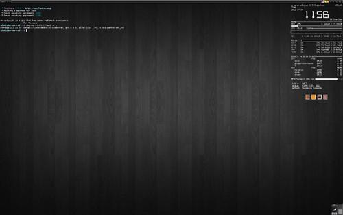 Gentoo-1-aisbaa-640x400