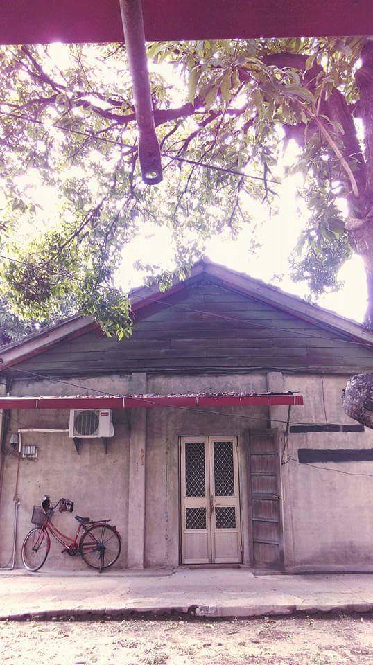 一棵老樹 一只老房 眷村保存的思維小徑 思考的同時,也揭開了序幕