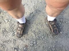 Dork Socks