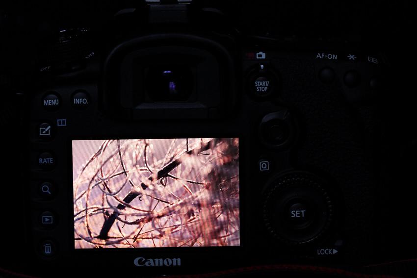 uusi kamera-2120