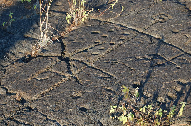 petroglyph-markings