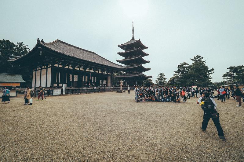 奈良公園|奈良 Nara