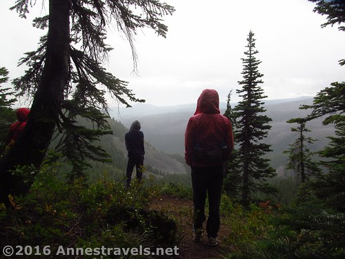 Approaching one of the social viewpoints along the Old Vista Ridge Trail, Mount Hood National Forest, Oregon