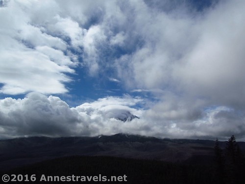 Clouds swirl to recover Mt. Hood as seen from Owl Point, Mount Hood National Forest, Oregon
