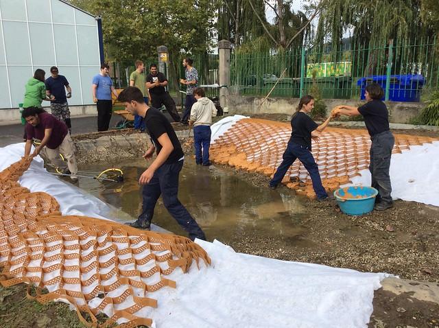 Preparativos del estanque