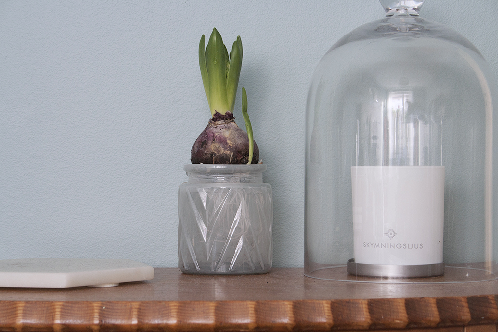 hyacint_glas (kopia)