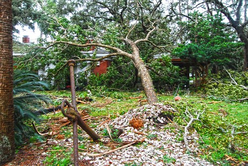 After Hurricane Matthew at the Undisclosed Location   (4)