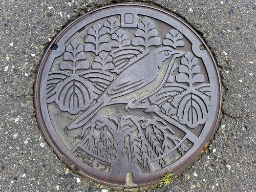 Yanaizu Fukushima, manhole cover (福島県柳津町のマンホール)