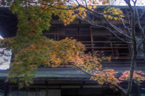 'Murin-an', Kyoto on NOV 28, 2016 vol01 (6)
