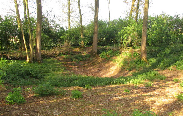 Shell Crater , Railway Wood, Ypres