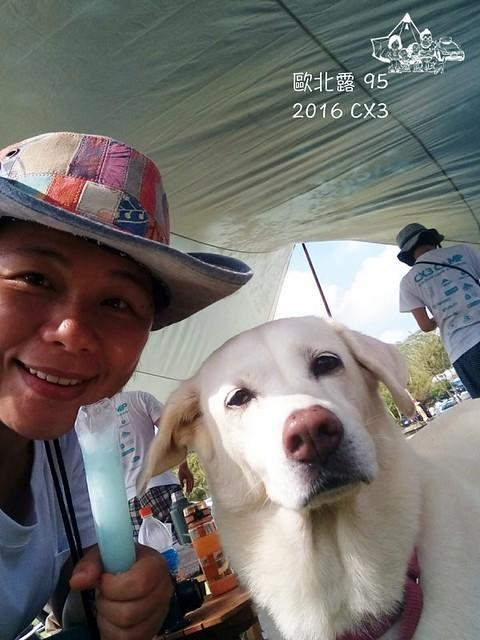 SelfieCity_20161023111937_org