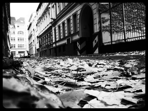 Ohmstraße Mitte