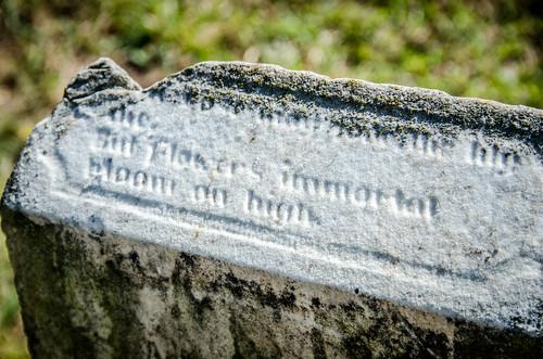 Magnolia Cemetery Spartanburg-055