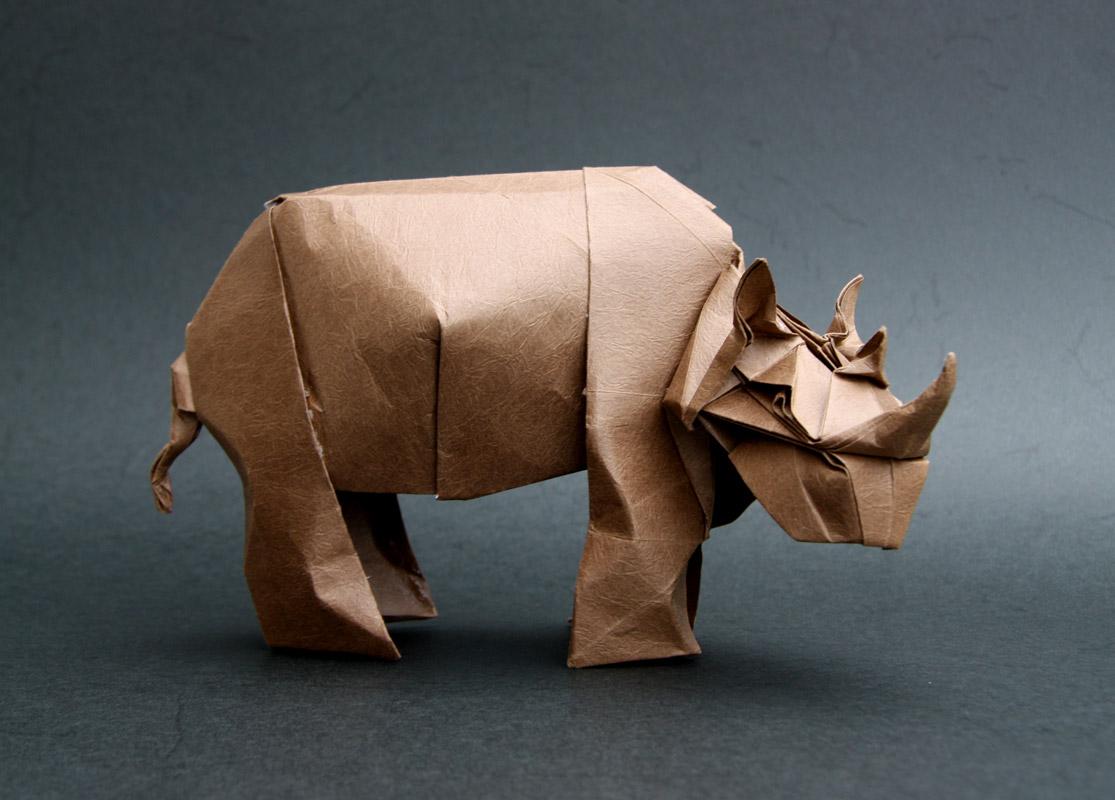 Bogota Rhino