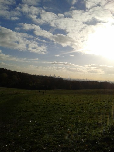 Winter Morning in Hampstead Heath