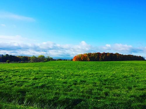 So much color today! #KnoxFarm #EastAurora #wny #autumn