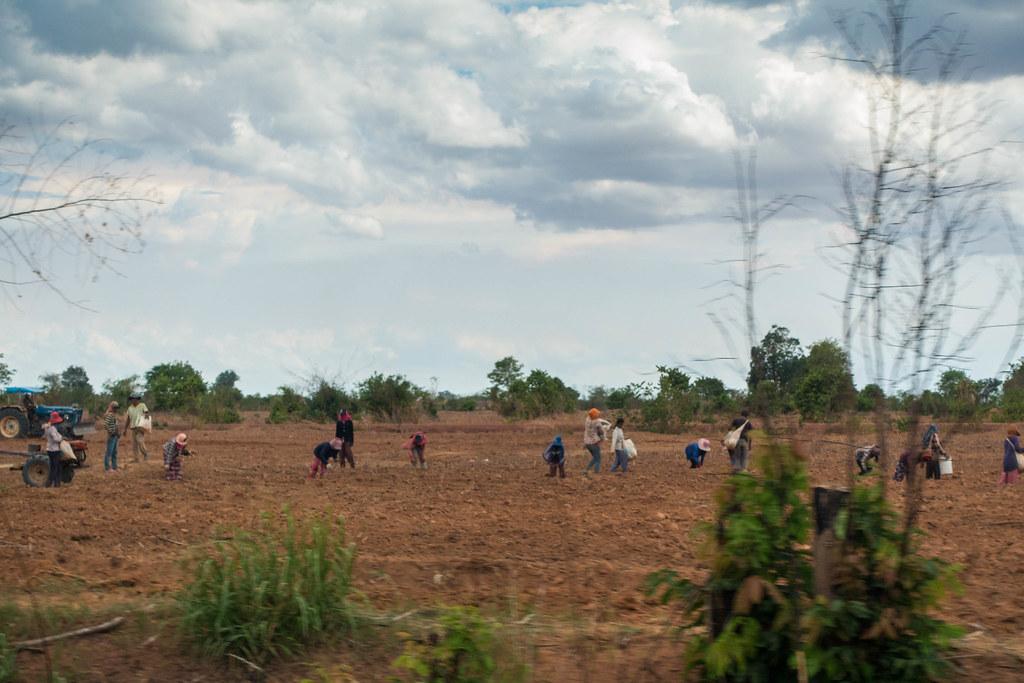 Cambodia-02369