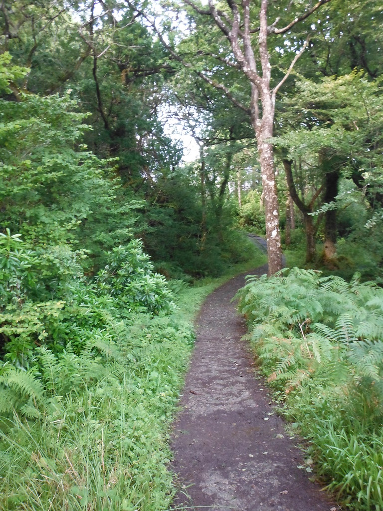 Around Tobermory 7